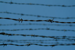 Barbed wire at Auschwitz concentration Camp Stock Images