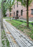 Barbed wire in Auschwitz concentration camp with blurred backgro Royalty Free Stock Photography