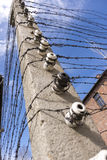Barbed wire in Auschwitz concentration camp Stock Photo