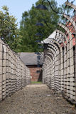 Barbed wire in Auschwitz, Poland. Barbed wire surrounding concentration camp in Auschwitz, Poland royalty free stock photography