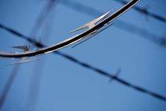 Barbed Wire Background Royalty Free Stock Image