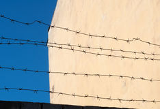 Barbed wire on background blue sky and  wall Stock Image
