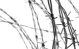 Barbed Wire Background Stock Photo