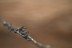 Barbed wire background, low key Stock Photos