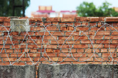 Barbed wire on a background of red brick wall Royalty Free Stock Photos