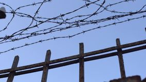 Barbed wire. On blue sky dolly shot stock video footage