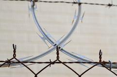 Barbed, Wire, Barrier Royalty Free Stock Photography