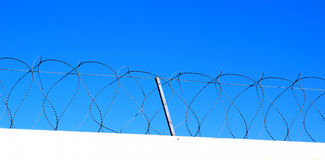 Barbed wire barrier Stock Photography
