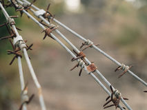 Barbed wire with battlefield. Barbed wire with battlefield background royalty free stock image