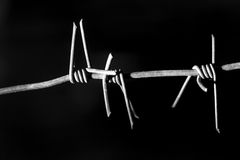 Barbed wire on black background Stock Image