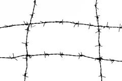 Barbed Wire Stock Photos