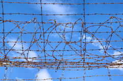Barbed wire blue sky Stock Photo