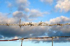 Barbed wire and blue sky. A barbed wire and blue sky on the background Stock Image