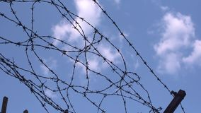 Barbed wire. On blue sky stock video