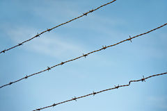 Barbed wire on blue sky background. Sharp fence. Barbed wire on blue sky background. Sharp metal fence Royalty Free Stock Photography