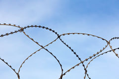 Barbed wire on blue sky background. Royalty Free Stock Image