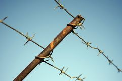 Barbed Wire And Blue Sky Royalty Free Stock Photography