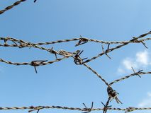 Barbed wire on blue sky lost freedom imprisonment refugee camp concept. Photo Royalty Free Stock Photo