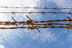 Barbed wire and blue sky Royalty Free Stock Images