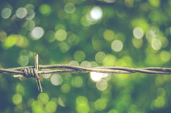 Barbed Wire Bokeh Royalty Free Stock Photo