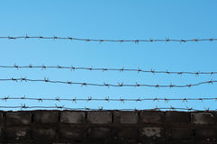 Barbed wire on brick wall Stock Image