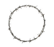 Barbed wire circle. Isolated on white background Stock Photography