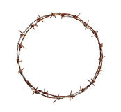 Barbed wire circle. Isolated on white background Royalty Free Stock Photography