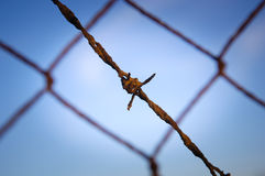 Barbed Wire Close Stock Images
