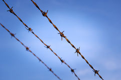 Barbed Wire Close Royalty Free Stock Photo