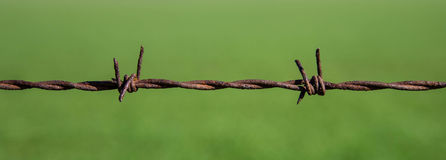 Barbed wire. A close up of barbed wire against a green field Royalty Free Stock Image