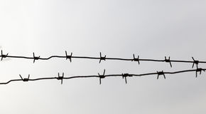 Barbed wire, close-up Stock Photo