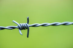 Barbed wire close up royalty free stock image