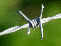 Barbed Wire Closeup Stock Photography