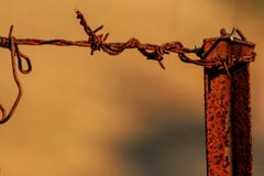 Barbed wire closeup Royalty Free Stock Photos
