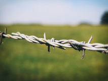 Barbed Wire (Color). Colored detail of a barbed wire Stock Images