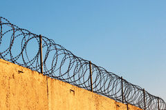 Barbed wire on concrete fence against blue sky background Royalty Free Stock Photography