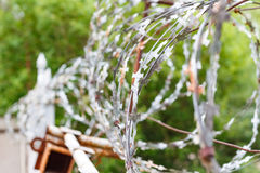 Barbed wire on a concrete fence. Fenced and guarded territory royalty free stock images