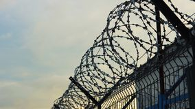 Barbed wire on the background of a gloomy cloudy sky. stock footage