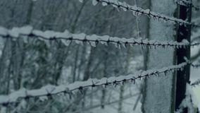 Barbed wire covered with ice stock video footage