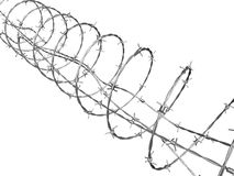 Barbed wire curled in spiral Stock Photos