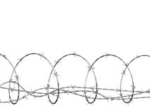 Barbed wire curled in spiral Royalty Free Stock Photo
