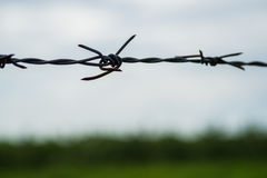 Barbed wire in the dark. Royalty Free Stock Image