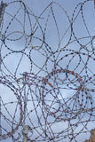 Barbed Wire Dark Sky Stock Photography