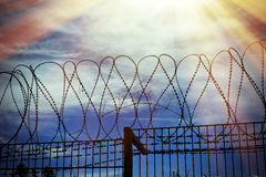 Barbed wire on dark sky Stock Image