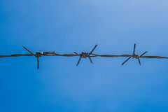 Barbed wire. In day light Stock Photo