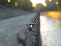 Barbed Wire  Dissected Stock Images