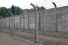 Barbed wire electric fence Stock Photos