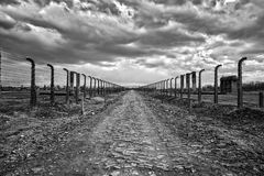 Barbed wire and fance around a camp. Road of dead for deportation prisoners. Royalty Free Stock Image