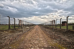 Barbed wire and fance around a camp. Side entrance of the concentration Royalty Free Stock Photos