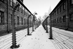 Barbed wire and fance around a concentration camp. Side entrance of the concentration camp. Museum Auschwitz - Birkenau. Holocaust Memorial Museum.  Barbed wire Royalty Free Stock Photos